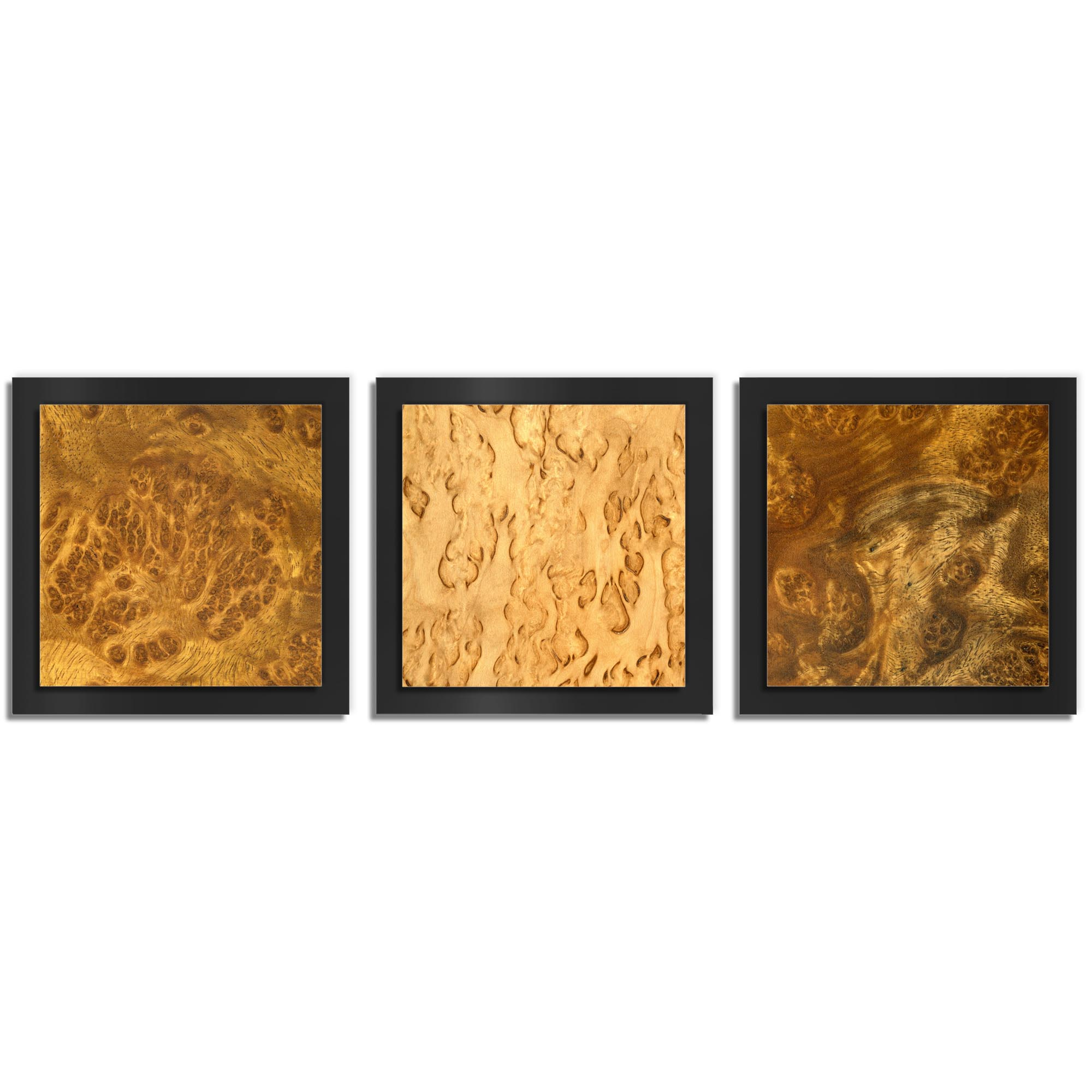 Jackson Wright 'Flame Burl Essence Black' 38in x 12in Contemporary Style Wood Wall Art
