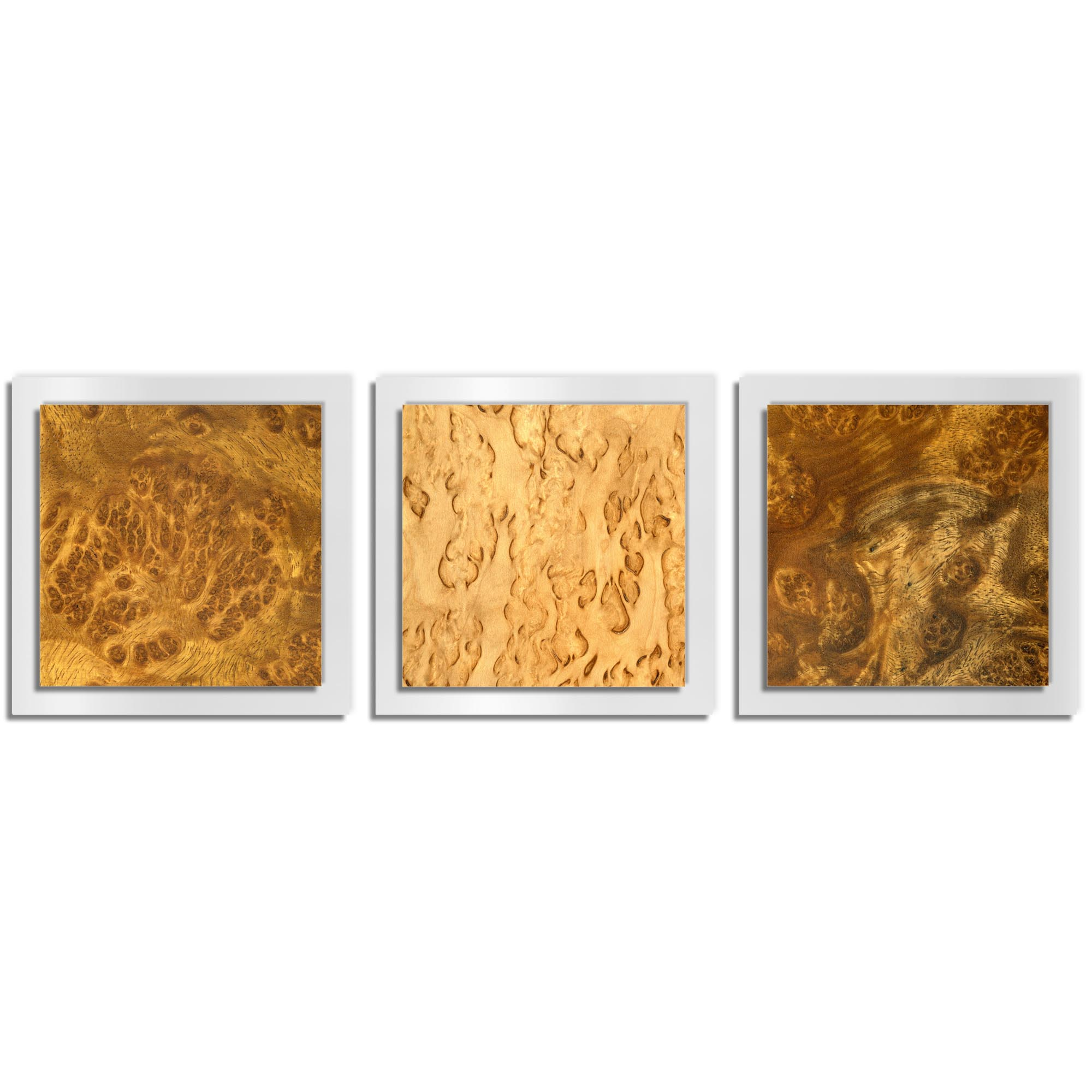 Jackson Wright 'Flame Burl Essence White' 38in x 12in Contemporary Style Wood Wall Art