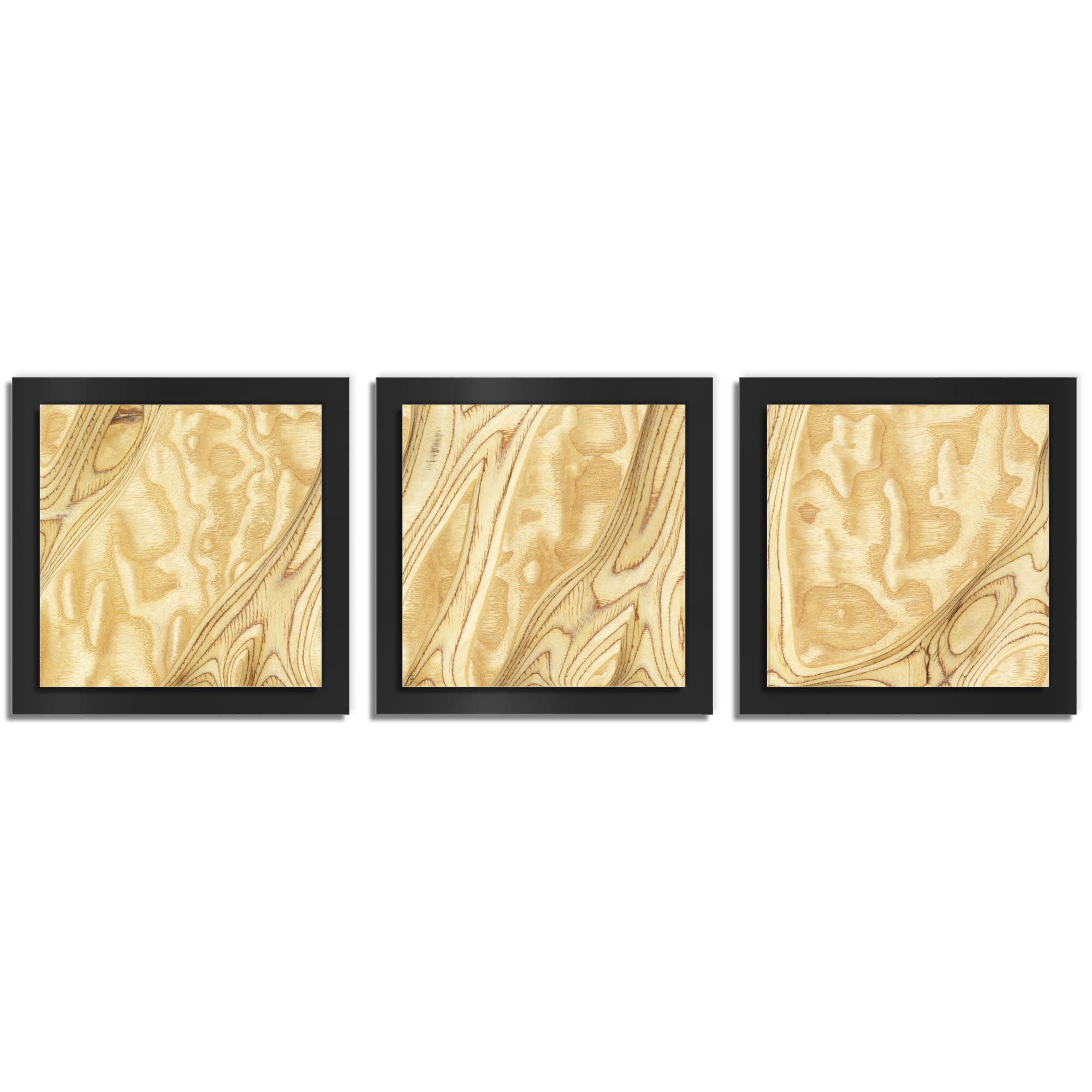 Jackson Wright 'Natural Burl Essence Black' 38in x 12in Contemporary Style Wood Wall Art