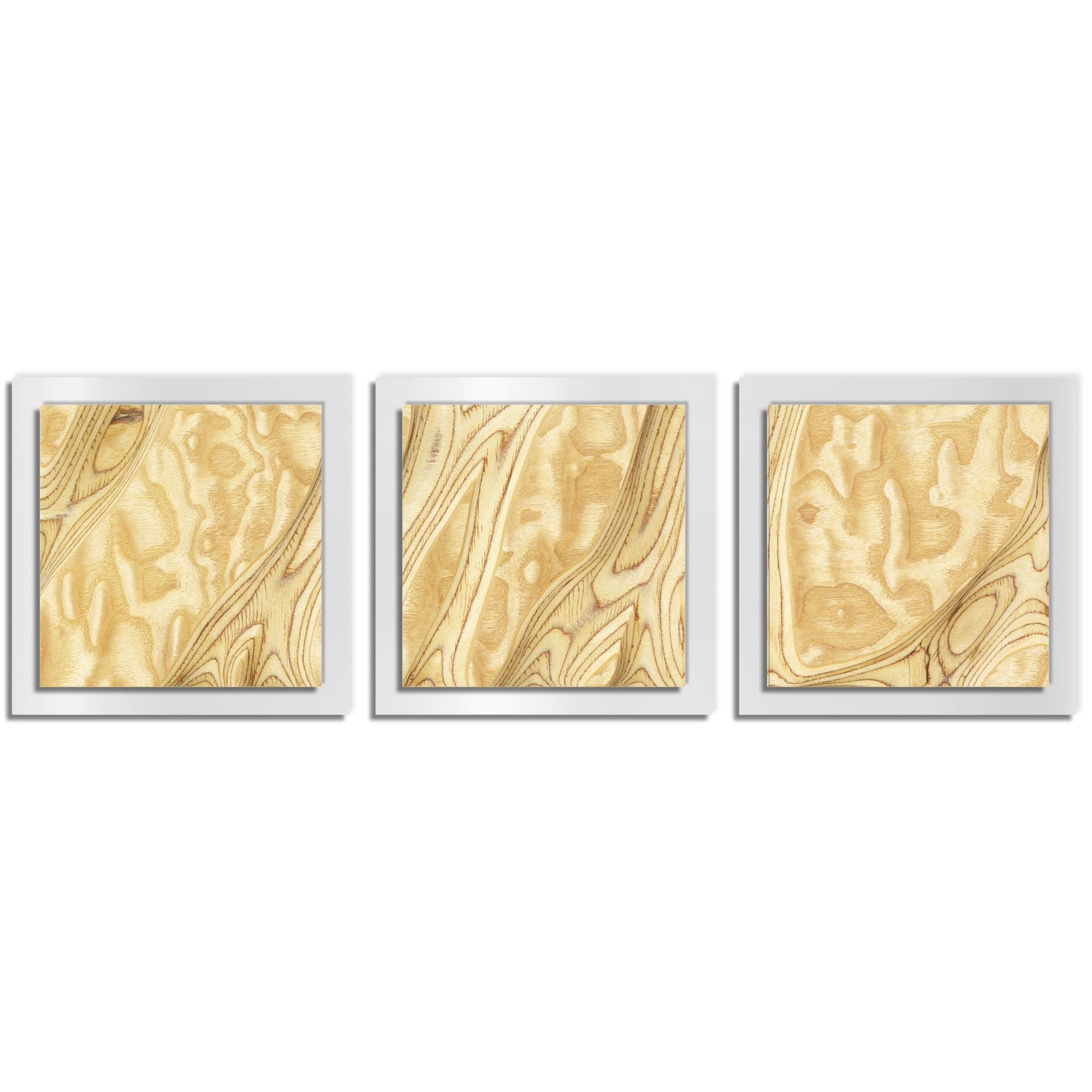 Jackson Wright 'Natural Burl Essence White' 38in x 12in Contemporary Style Wood Wall Art