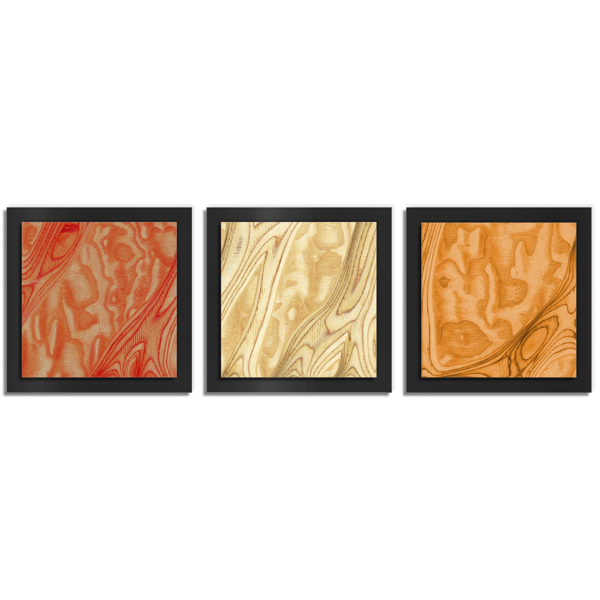 Jackson Wright 'Autumn Burl Essence Black' 38in x 12in Contemporary Style Wood Wall Art
