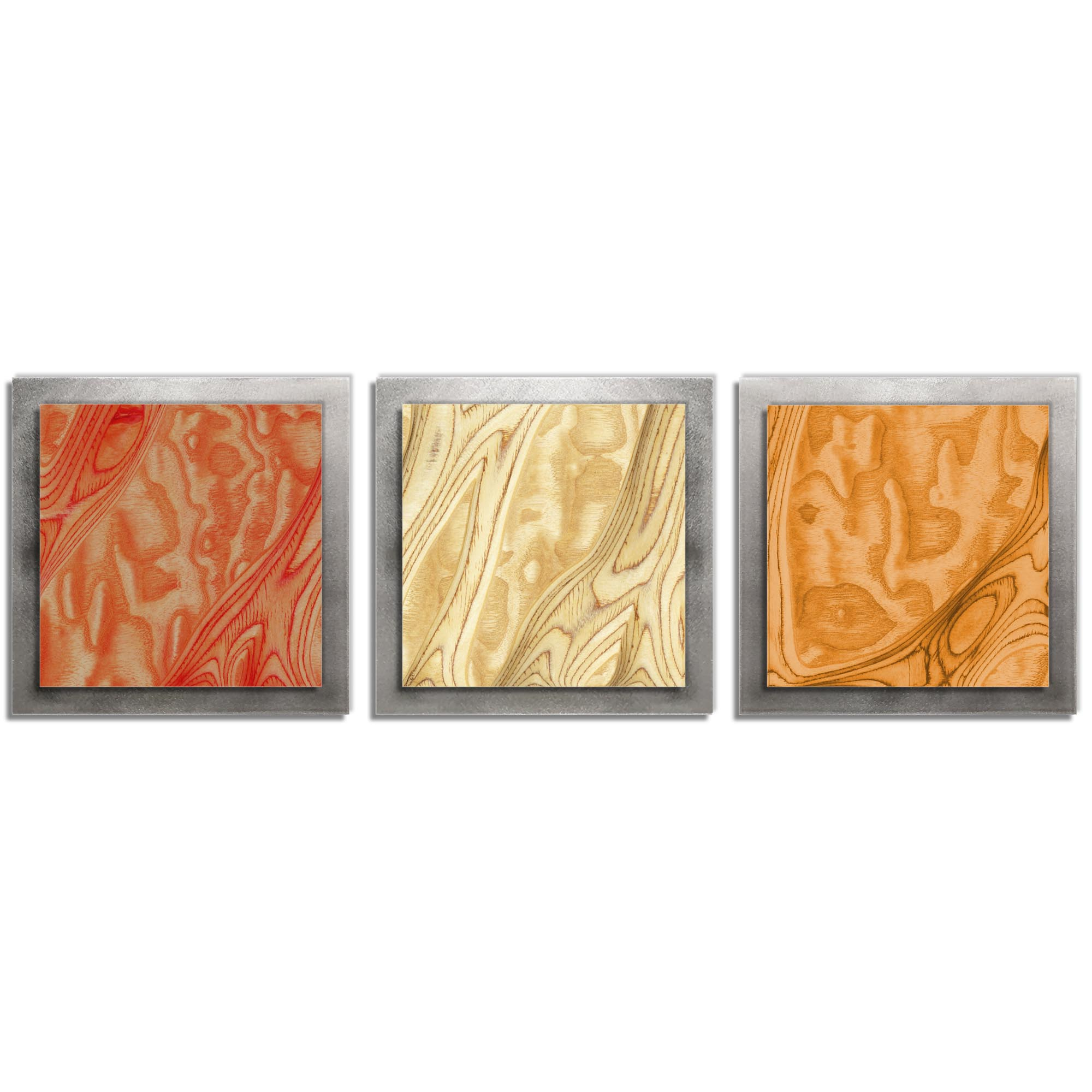 Jackson Wright 'Autumn Burl Essence Silver' 38in x 12in Contemporary Style Wood Wall Art