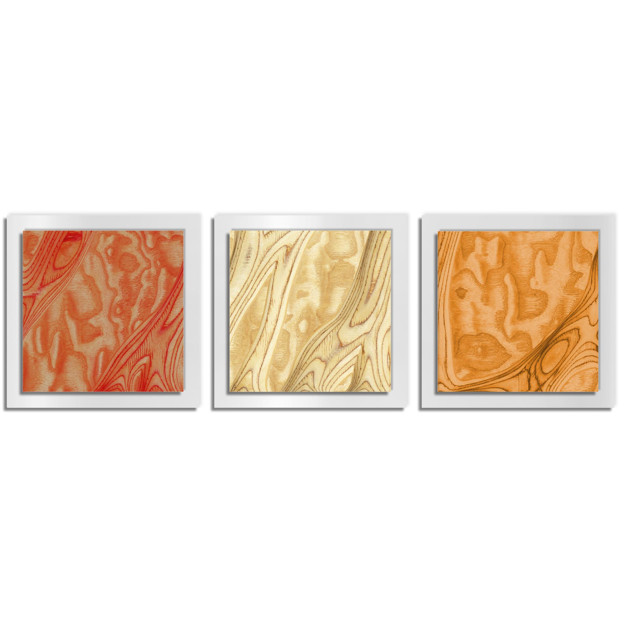 Jackson Wright 'Autumn Burl Essence White' 38in x 12in Contemporary Style Wood Wall Art