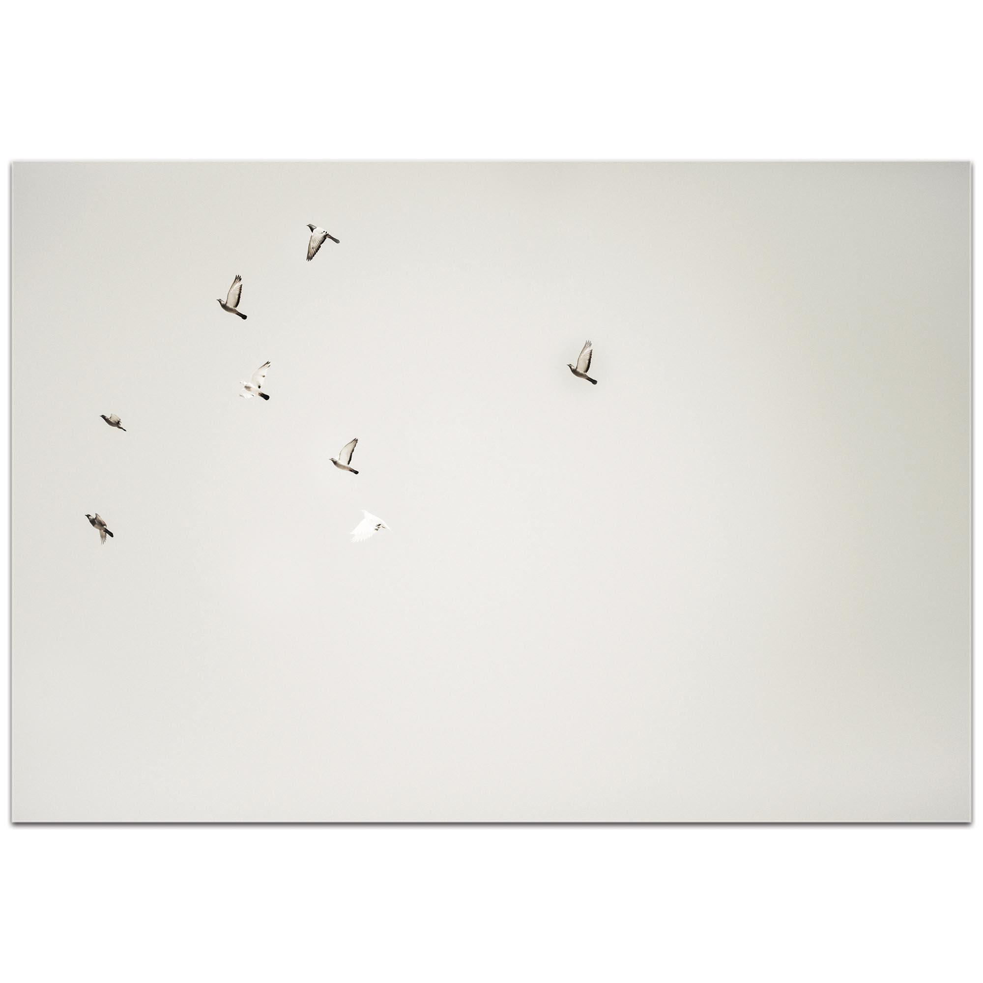 Minimalist Wall Art 'The Journey' - Wildlife Decor on Metal or Plexiglass - Image 2