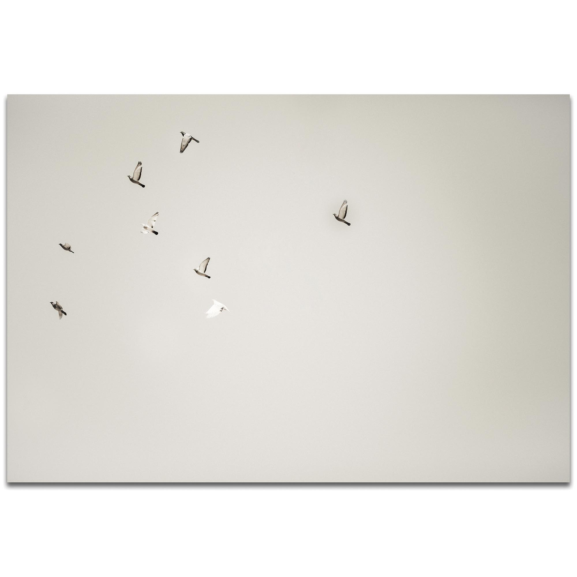 Minimalist Wall Art 'The Journey' - Wildlife Decor on Metal or Plexiglass