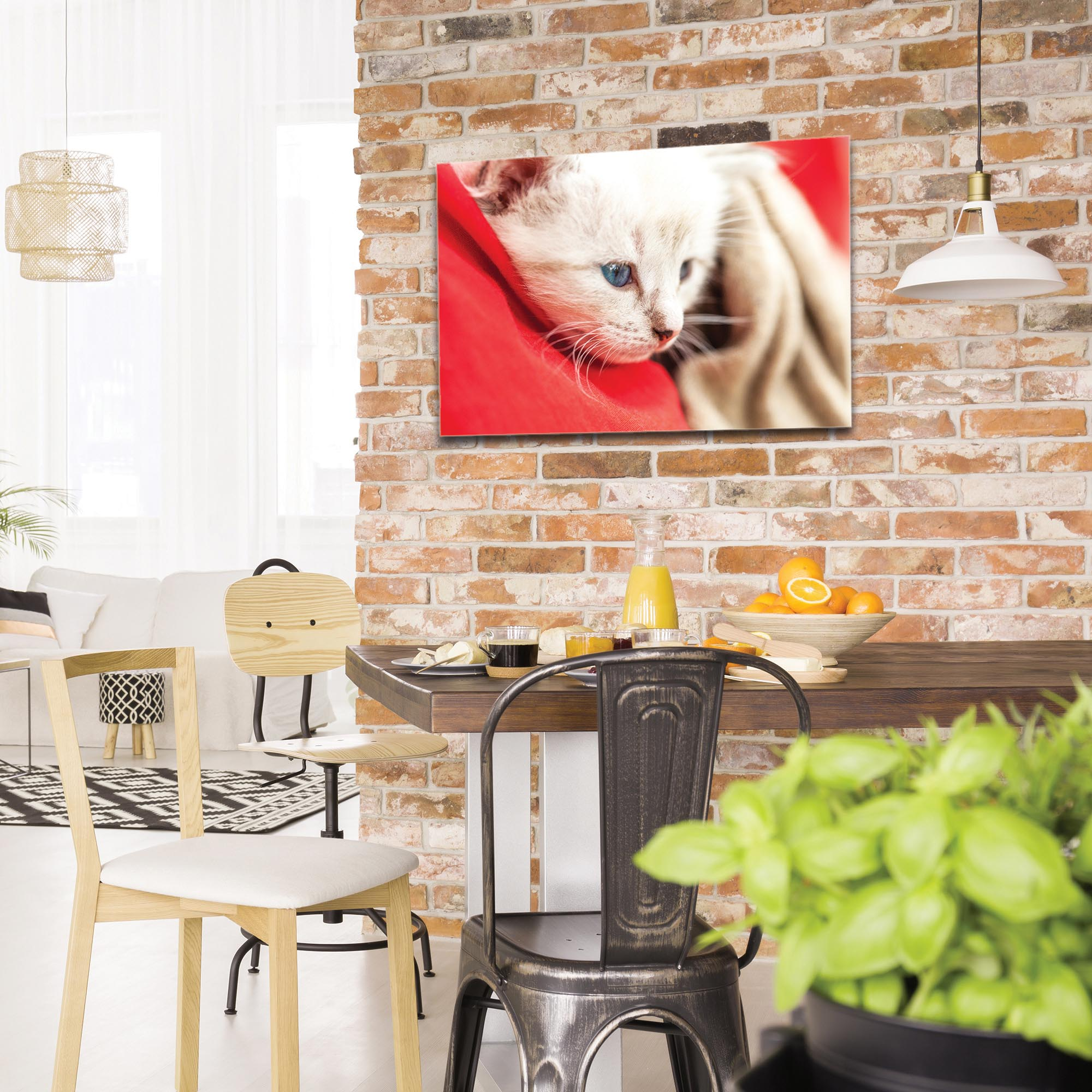 Casual Wall Art 'Bundled Kitten' - Wildlife Decor on Metal or Plexiglass - Image 3