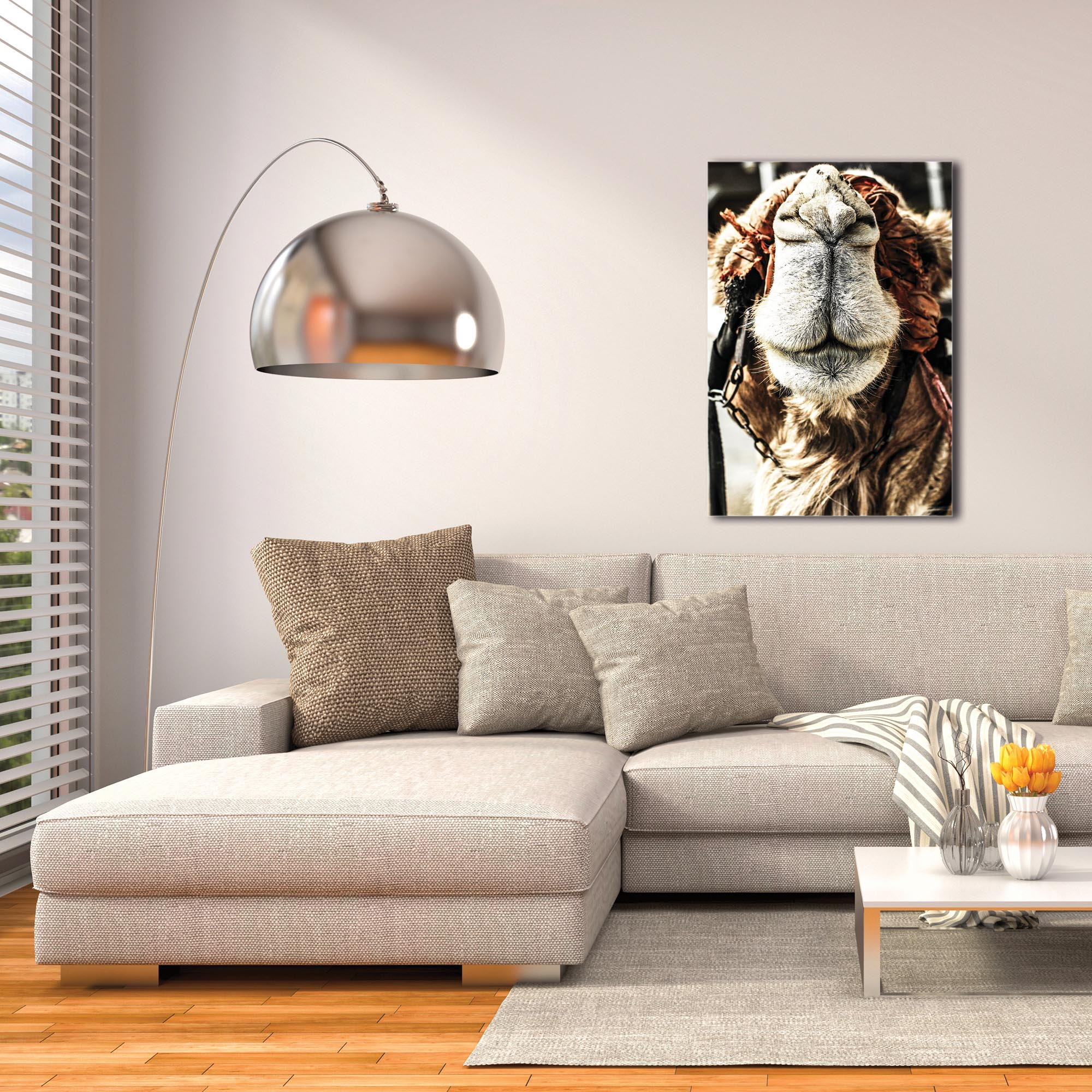 Casual Wall Art 'Camel Grin' - Wildlife Decor on Metal or Plexiglass - Image 3