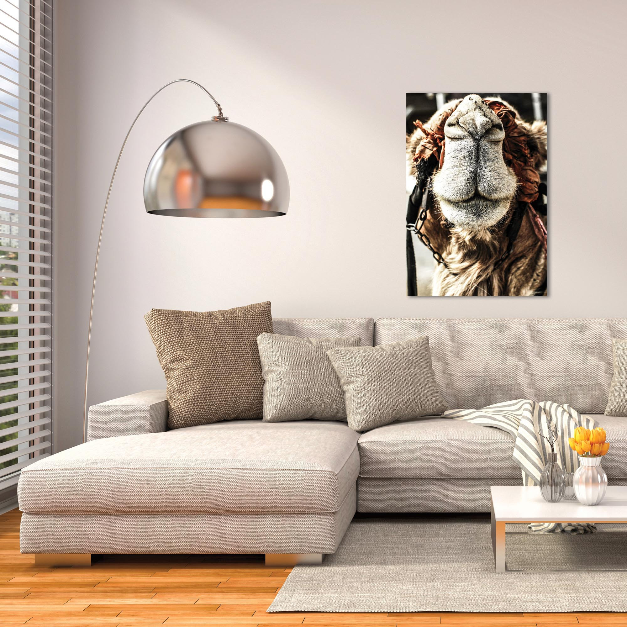 Casual Wall Art 'Camel Grin' - Wildlife Decor on Metal or Plexiglass - Lifestyle View