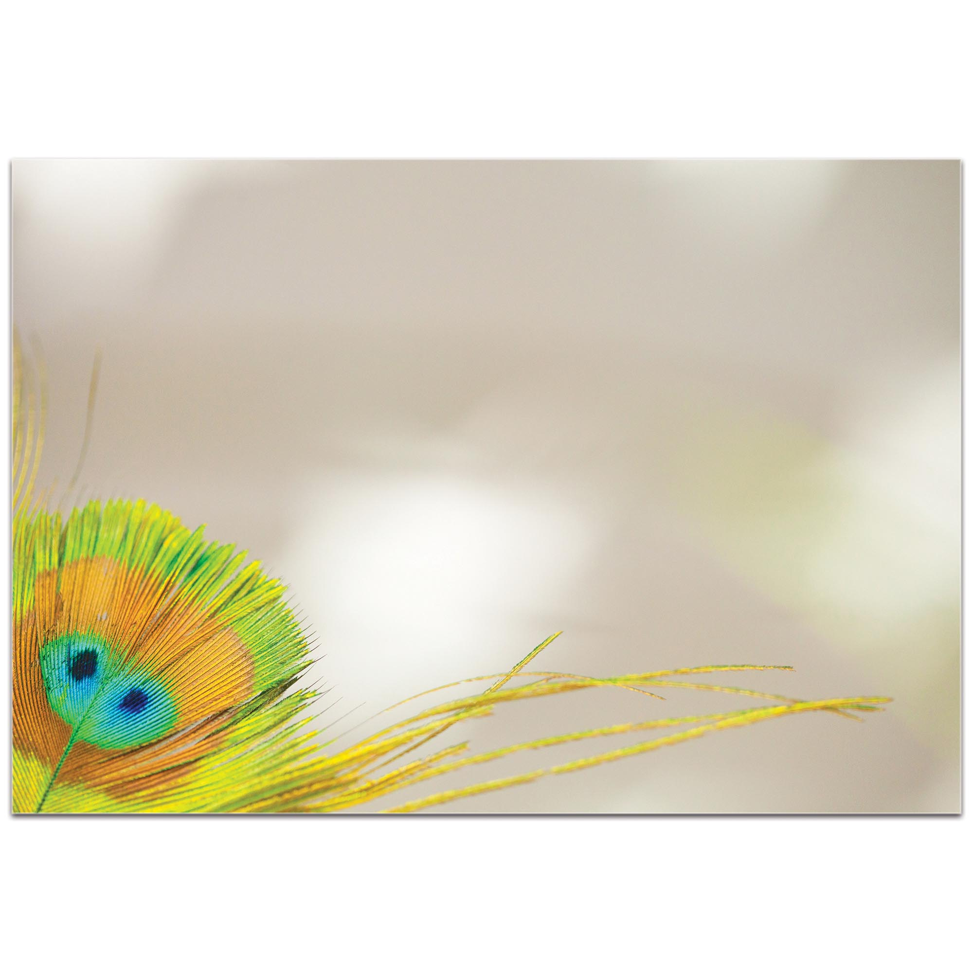 Contemporary Wall Art 'Peacock Corner' - Wildlife Decor on Metal or Plexiglass - Image 2