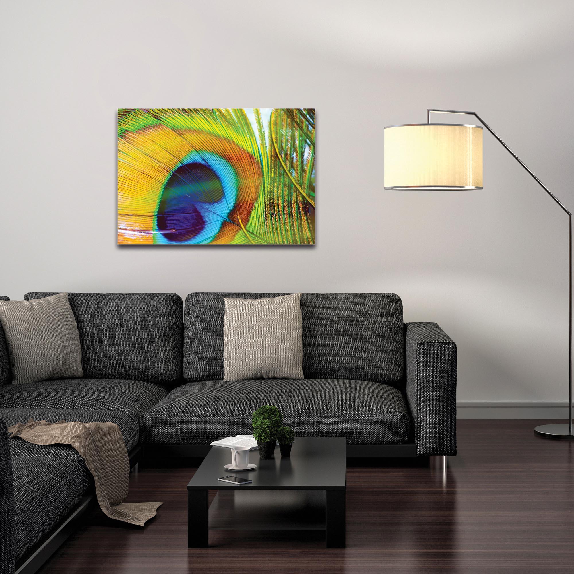 Contemporary Wall Art 'Peacock Colors' - Wildlife Decor on Metal or Plexiglass - Image 3