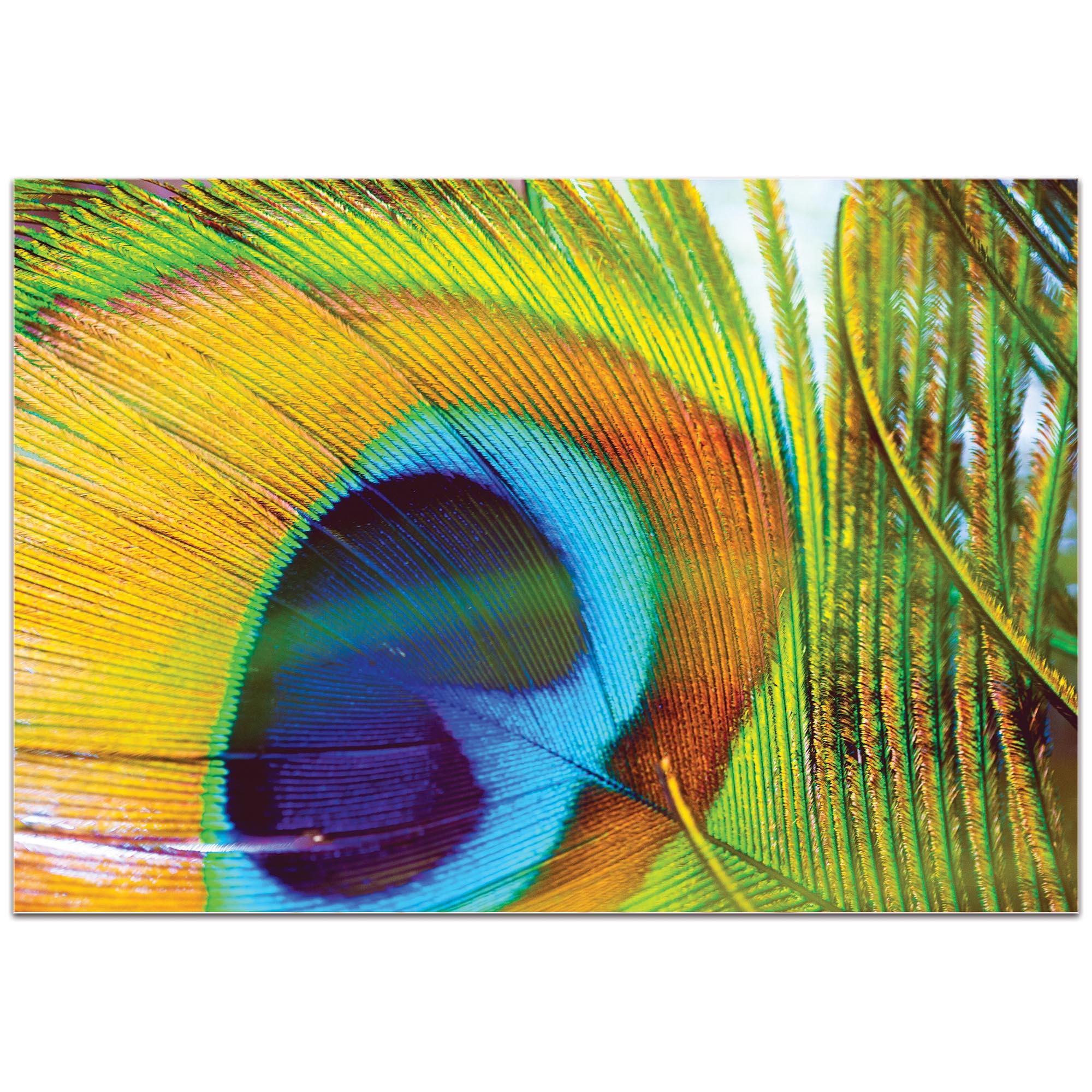 Contemporary Wall Art 'Peacock Colors' - Wildlife Decor on Metal or Plexiglass - Image 2