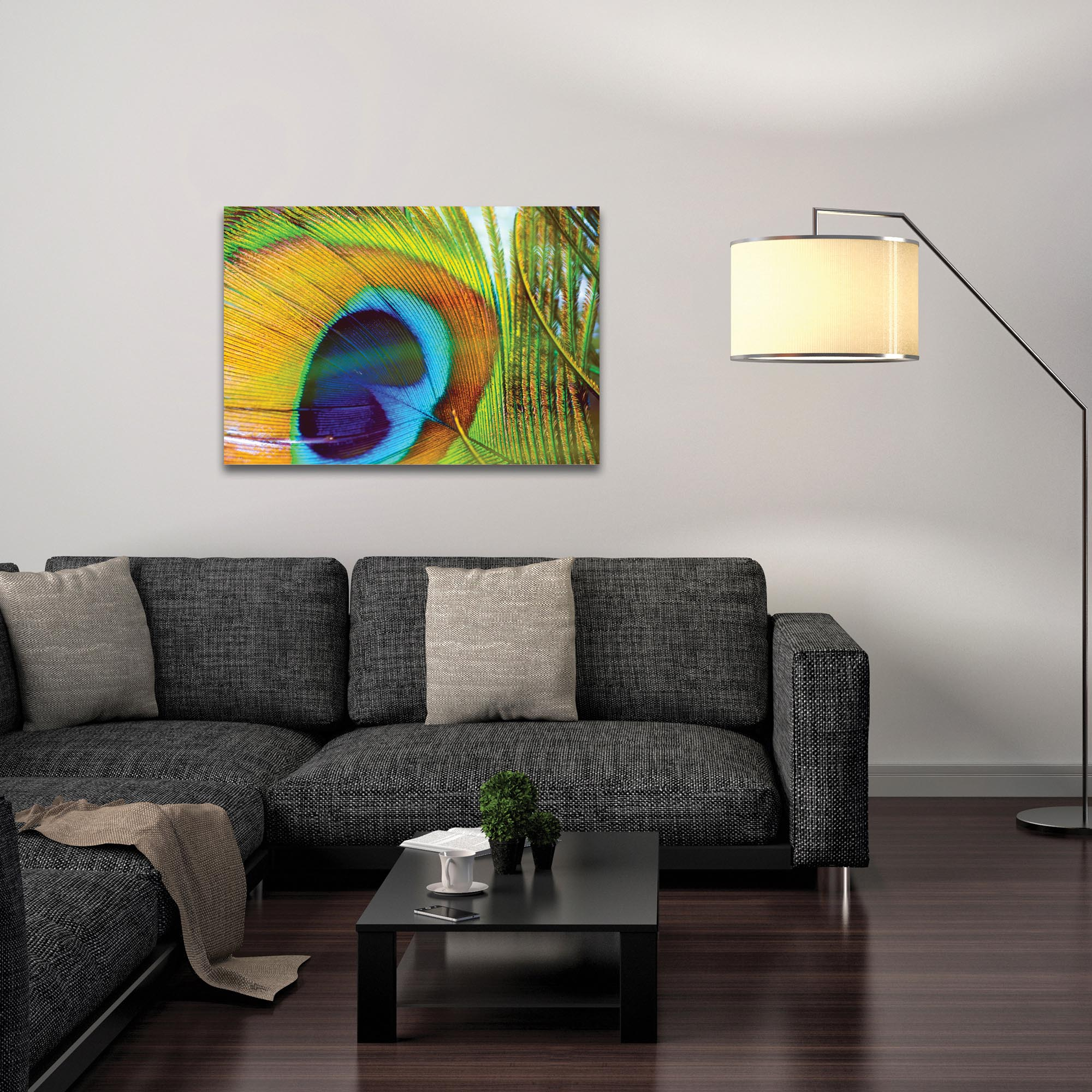Contemporary Wall Art 'Peacock Colors' - Wildlife Decor on Metal or Plexiglass - Lifestyle View