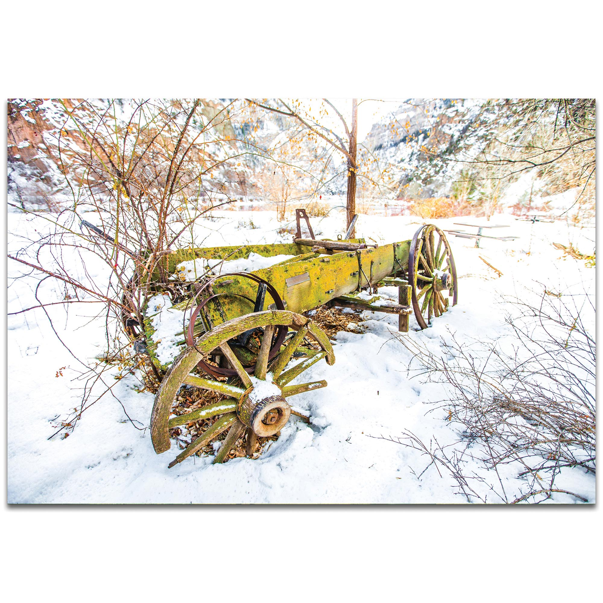 Western Wall Art 'Wagon Ruins' - Farm Landscape Decor on Metal or Plexiglass