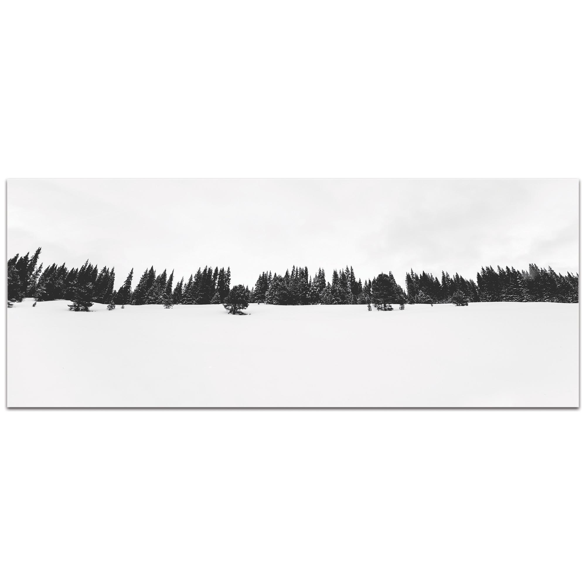 Landscape Photography 'Life Line' - Winter Trees Art on Metal or Plexiglass - Image 2