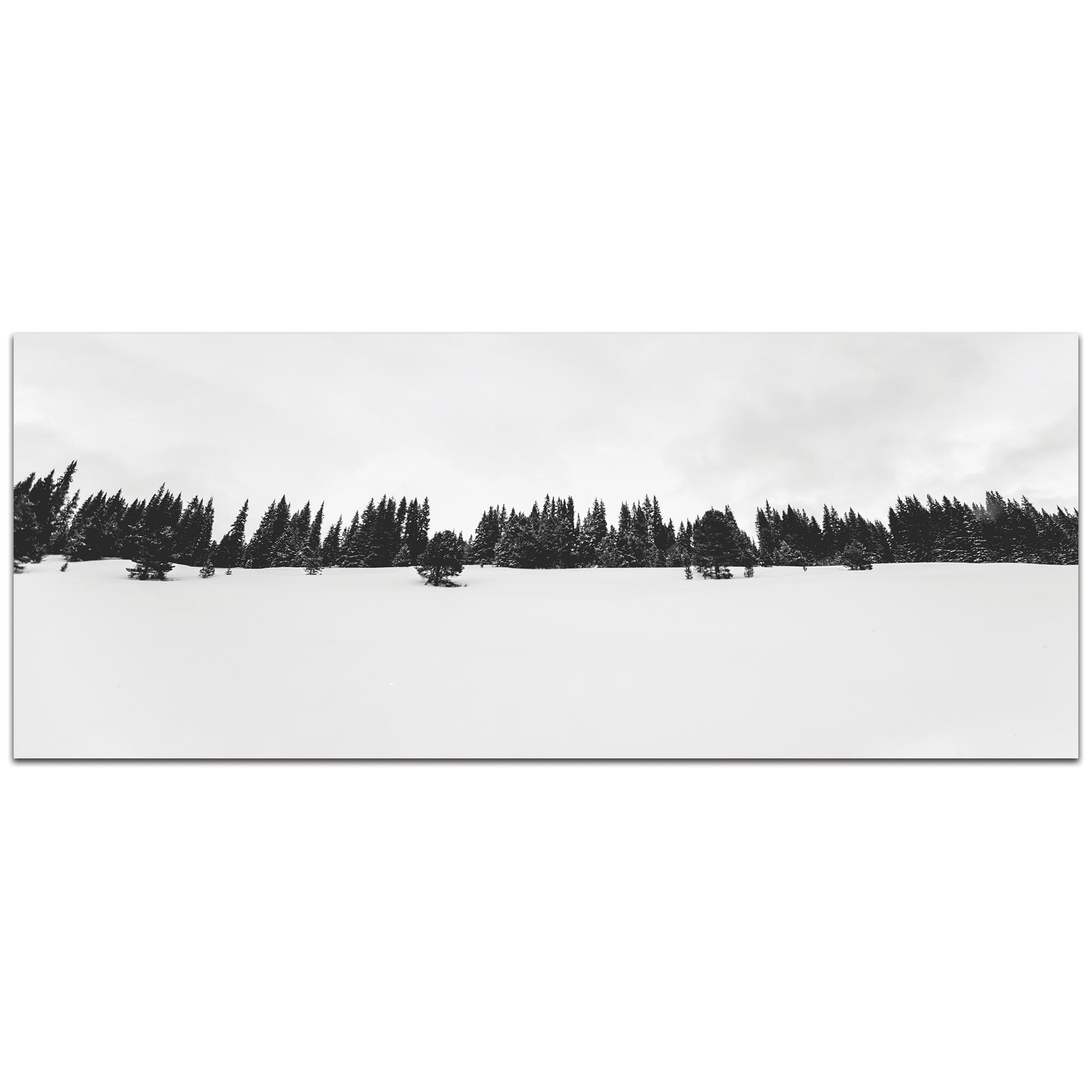 Landscape Photography 'Life Line' - Winter Trees Art on Metal or Plexiglass