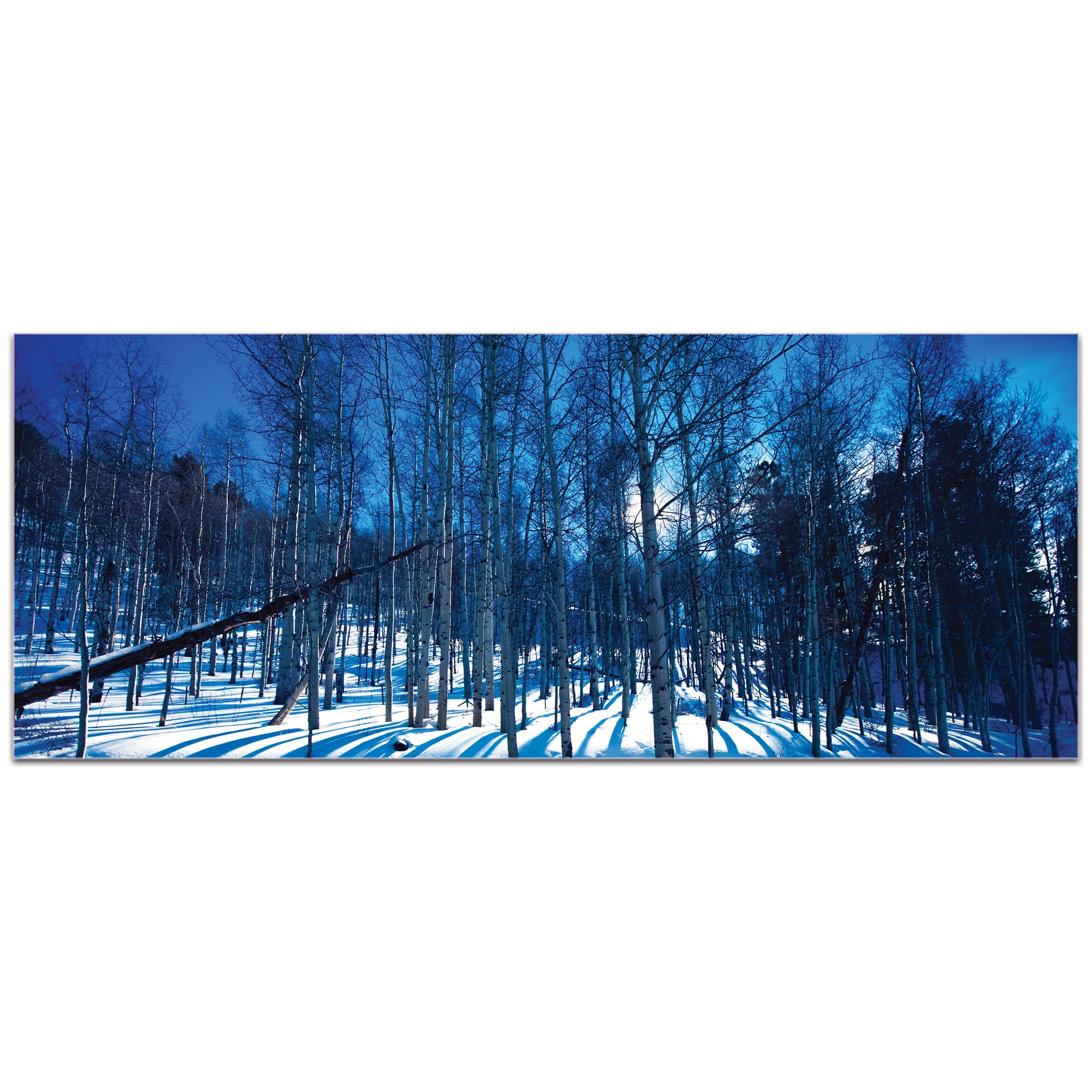 Landscape Photography 'Aspen Blues' - Winter Scene Art on Metal or Plexiglass - Image 2
