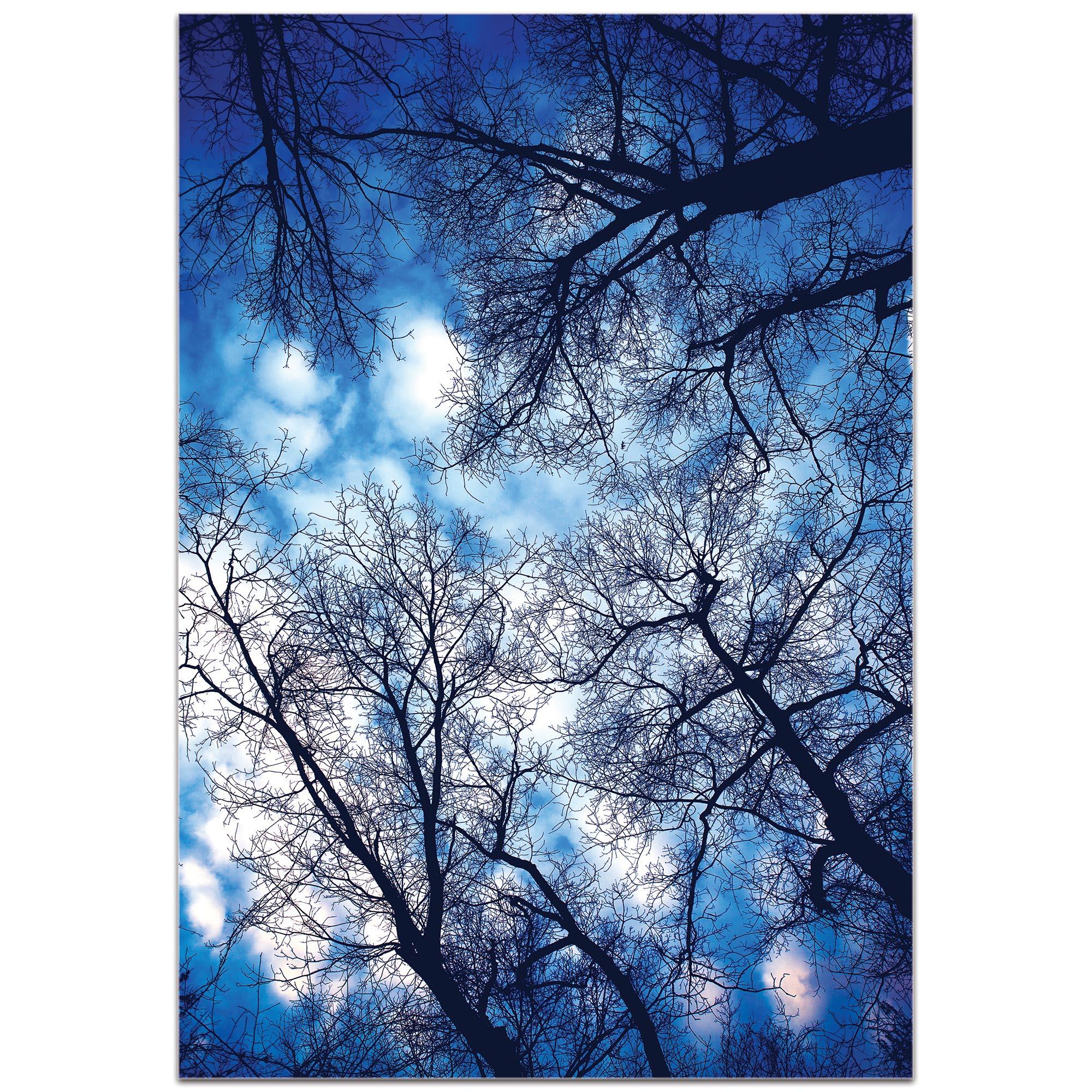 Landscape Photography 'Sky Vains' - Winter Scene Art on Metal or Plexiglass - Image 2