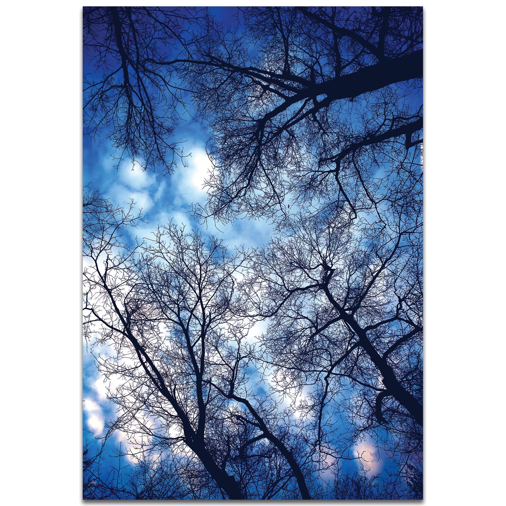Landscape Photography 'Sky Vains' - Winter Scene Art on Metal or Plexiglass