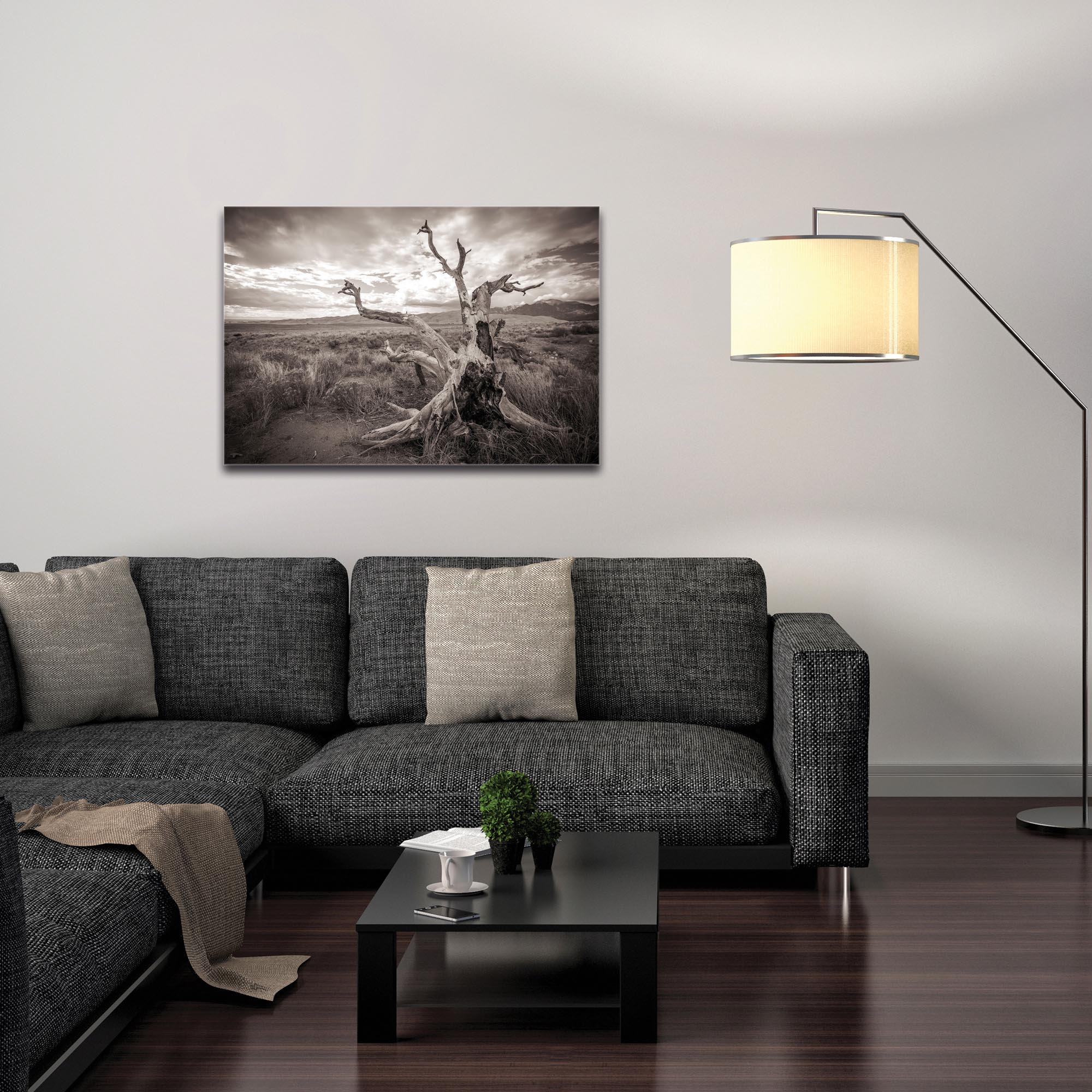 Film Noir Wall Art 'Knotty Valley' - Black & White Photography on Metal or Plexiglass - Image 3