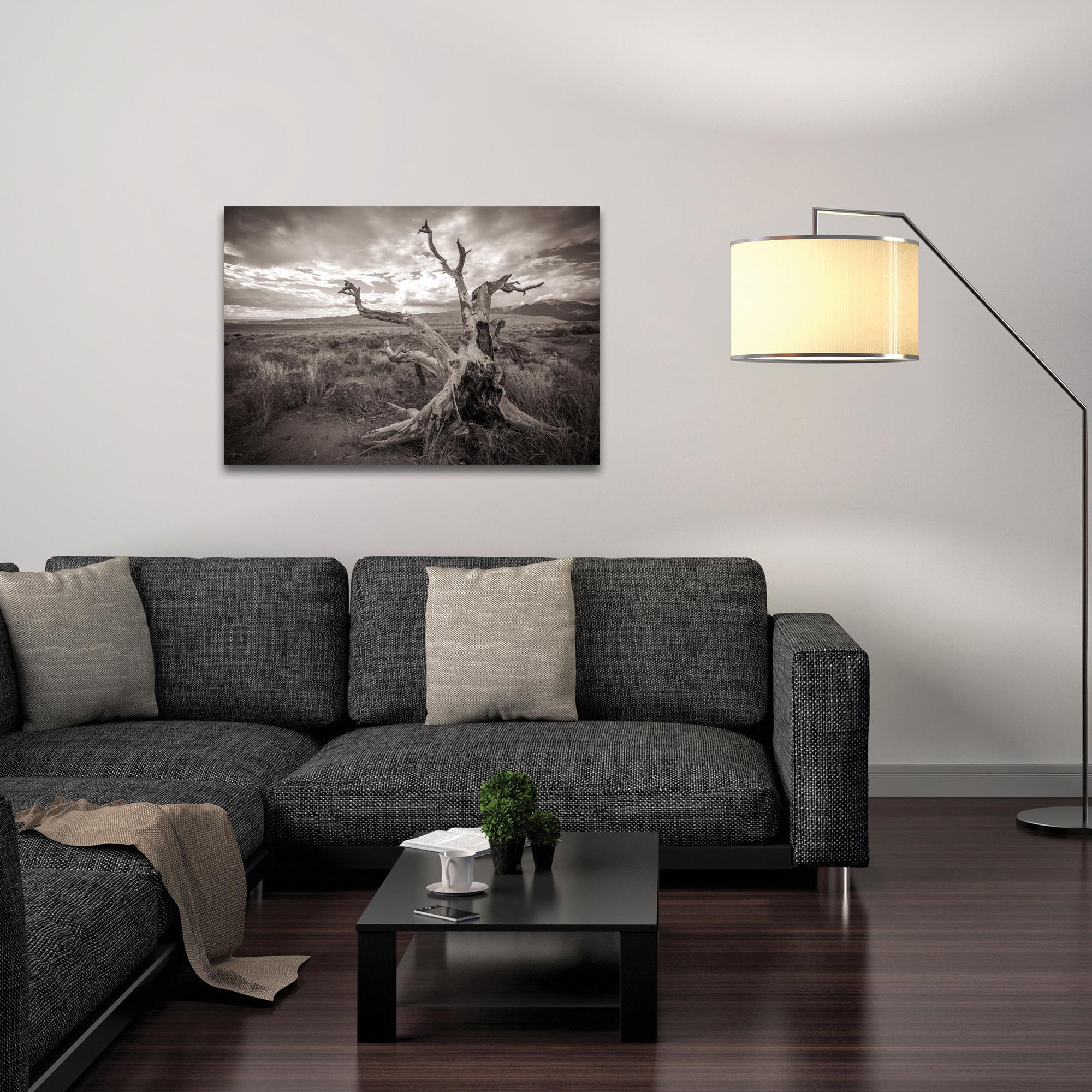 Film Noir Wall Art 'Knotty Valley' - Black & White Photography on Metal or Plexiglass - Lifestyle View
