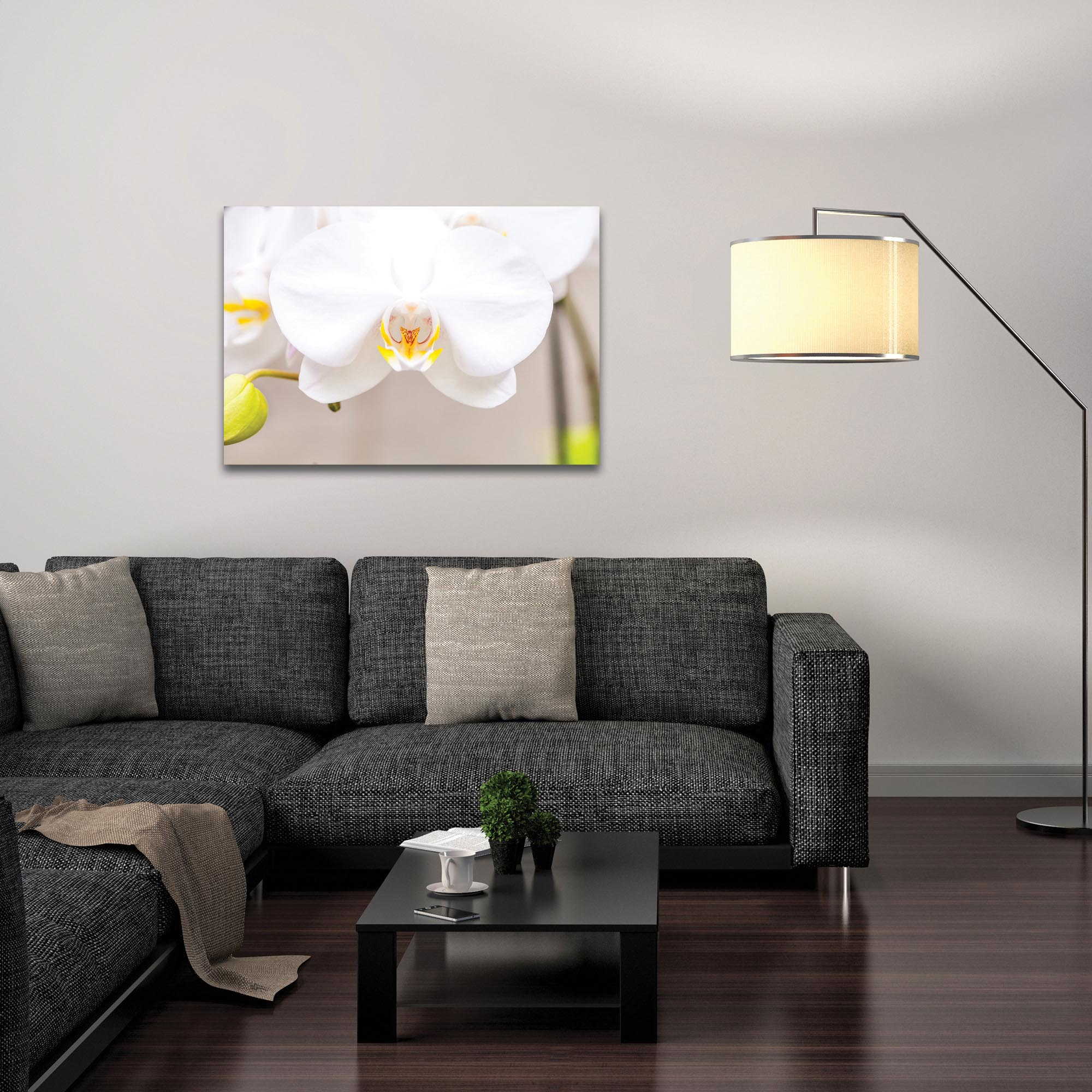 Nature Photography 'White Bloom' - Flower Blossom Art on Metal or Plexiglass - Lifestyle View