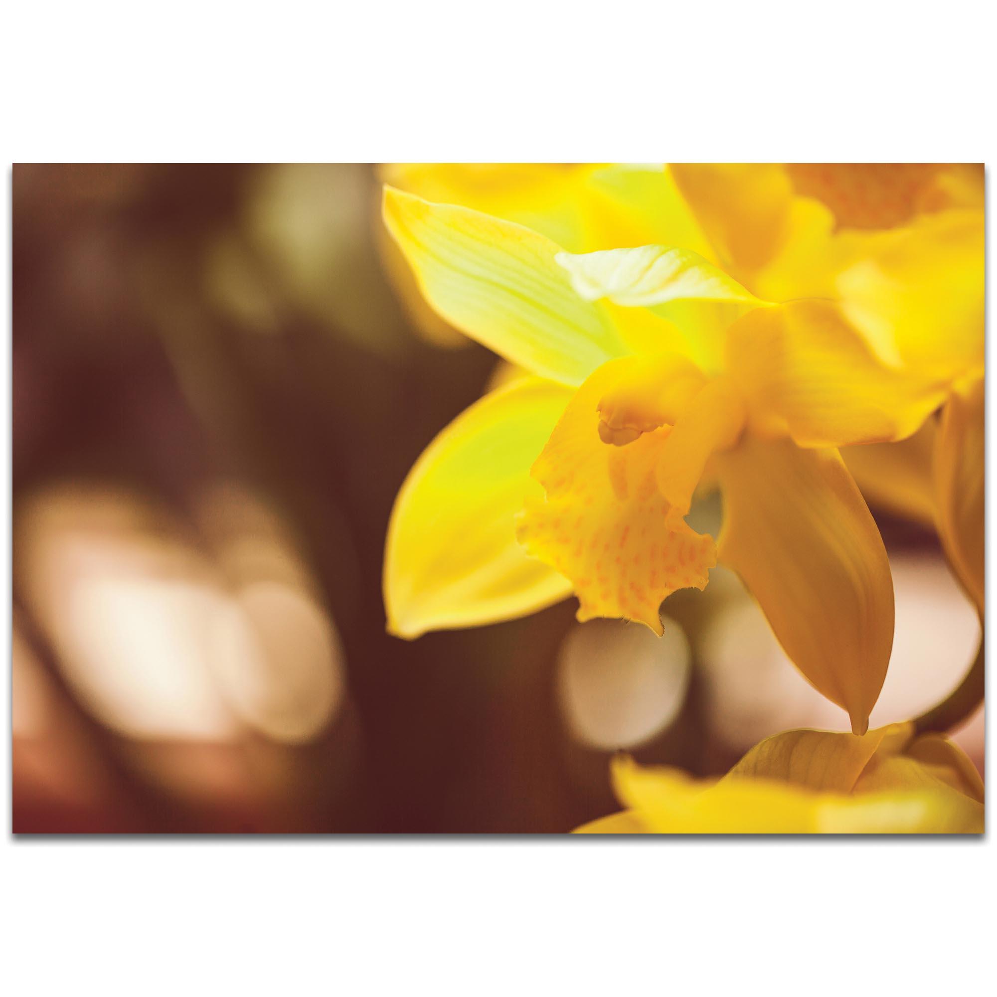 Nature Photography 'Golden Bloom' - Flower Blossom Art on Metal or Plexiglass