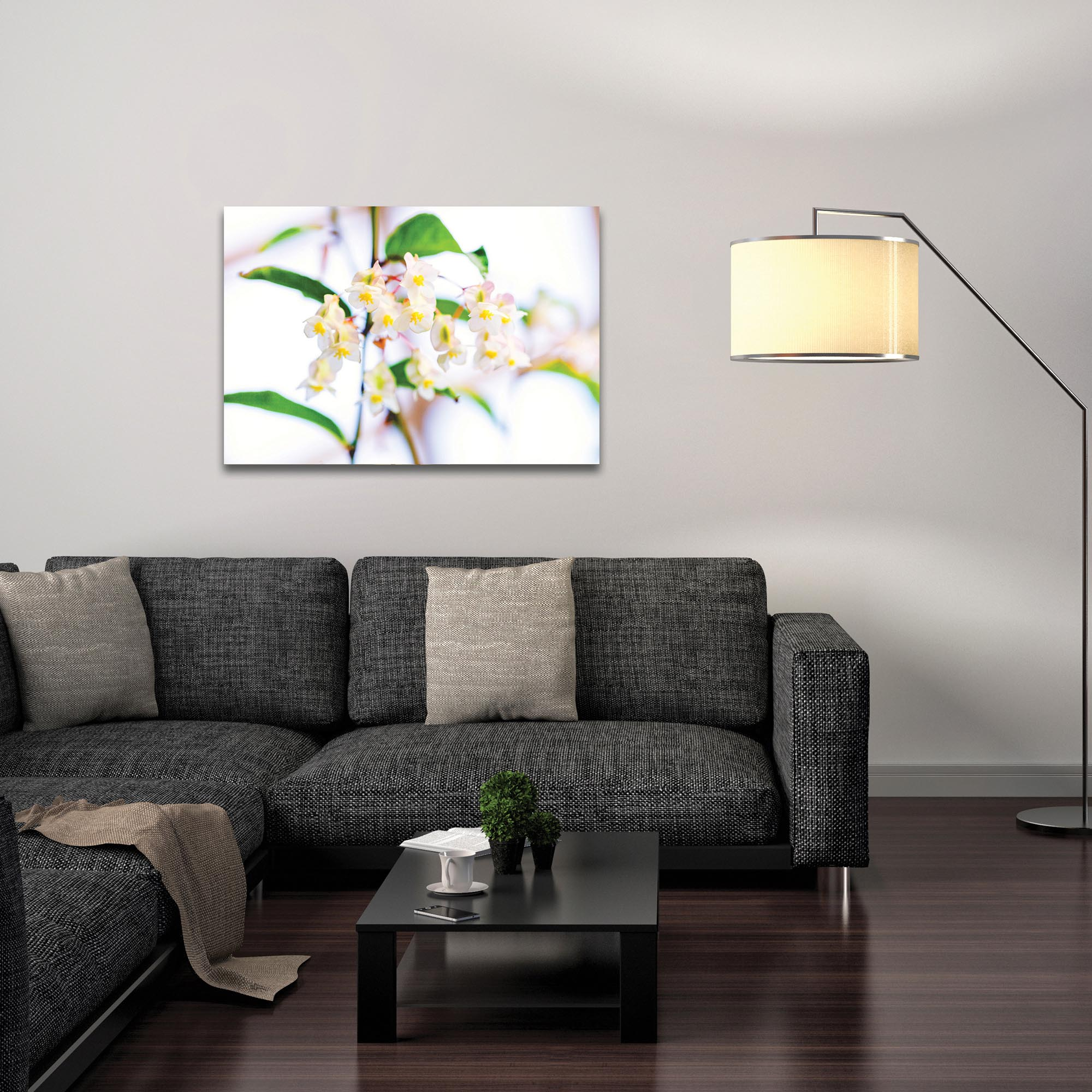 Nature Photography 'Popcorn in Bloom' - Flower Blossom Art on Metal or Plexiglass - Lifestyle View