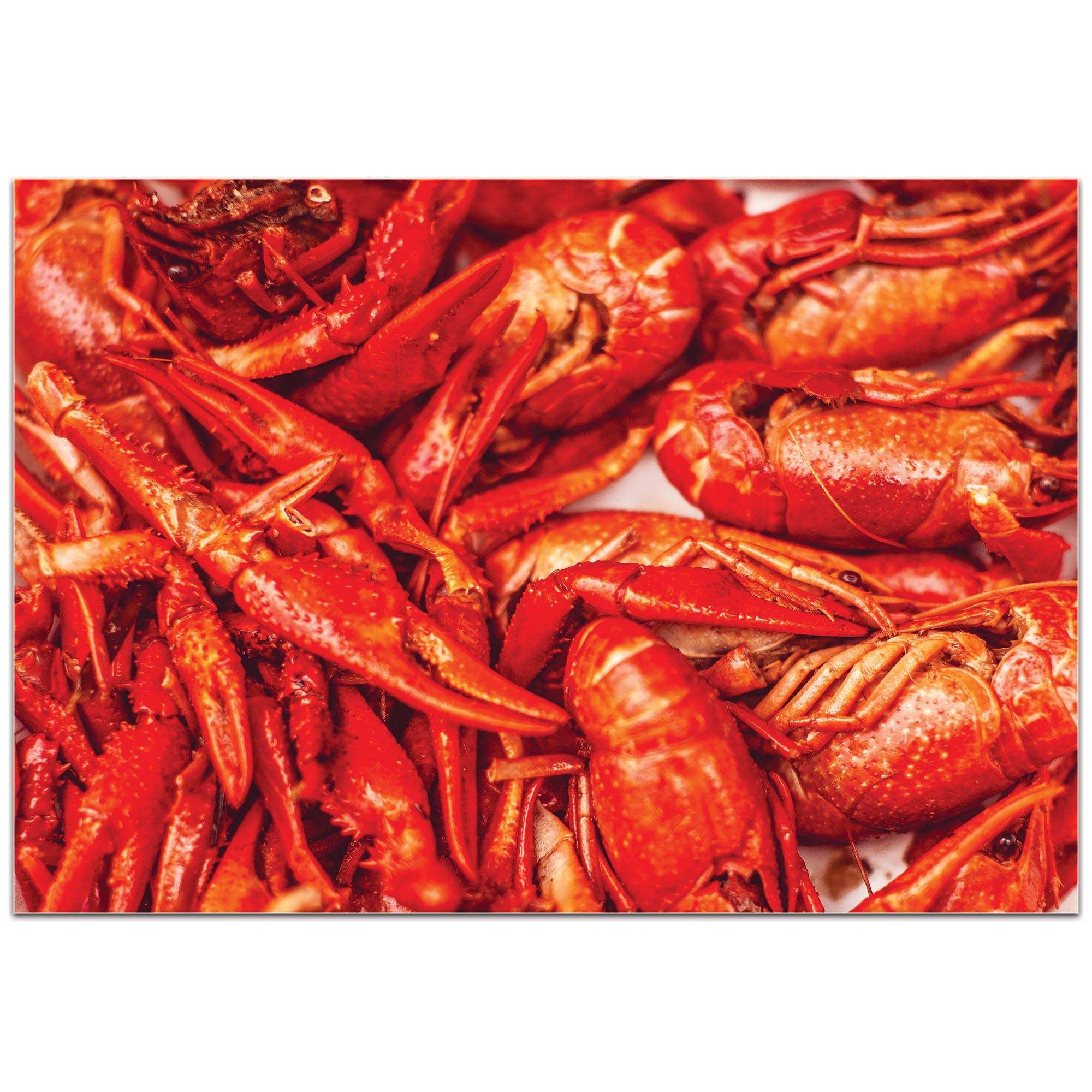 Coastal Wall Art 'Crawfish Supper' - Crayfish Boil Decor on Metal or Plexiglass - Image 2
