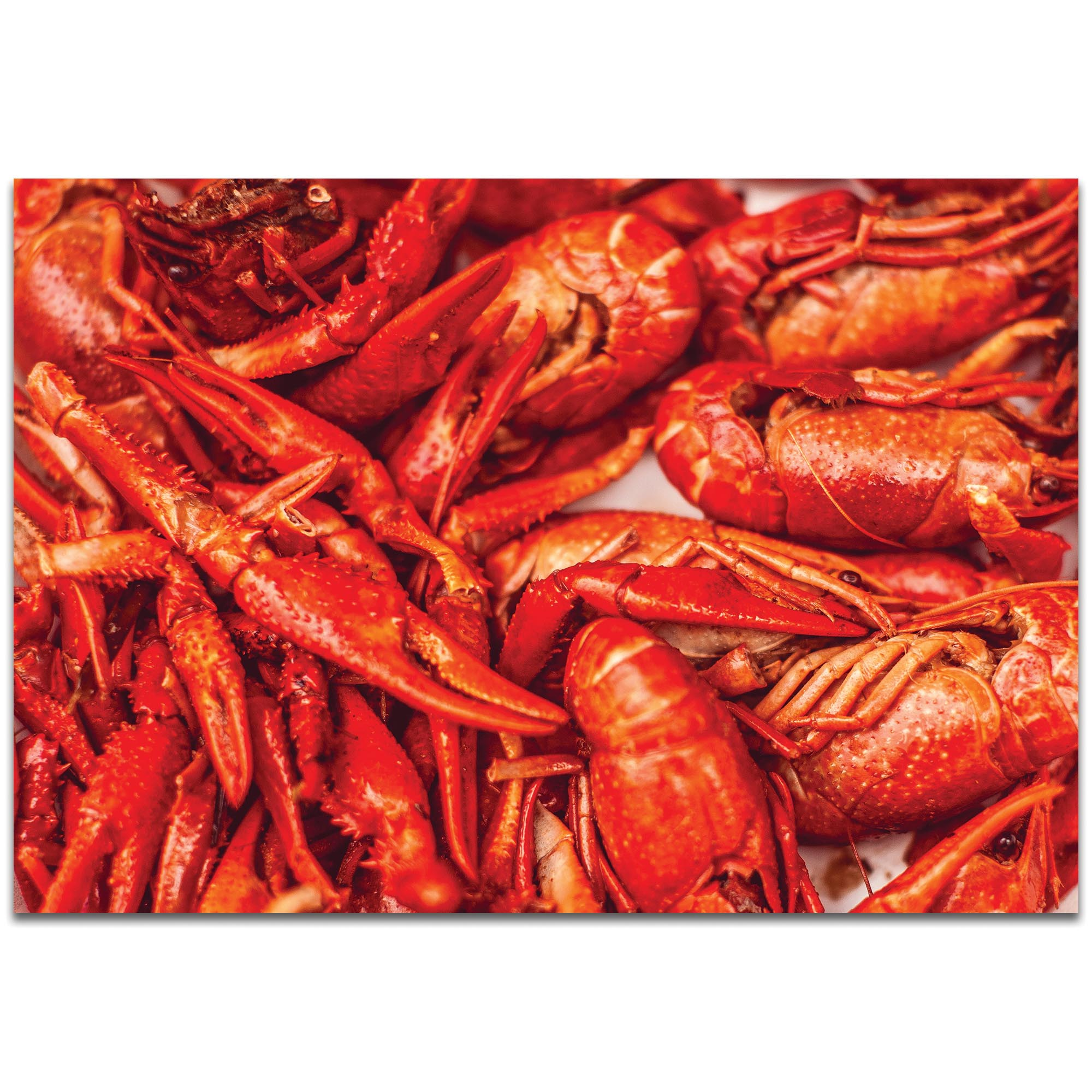 Coastal Wall Art 'Crawfish Supper' - Crayfish Boil Decor on Metal or Plexiglass