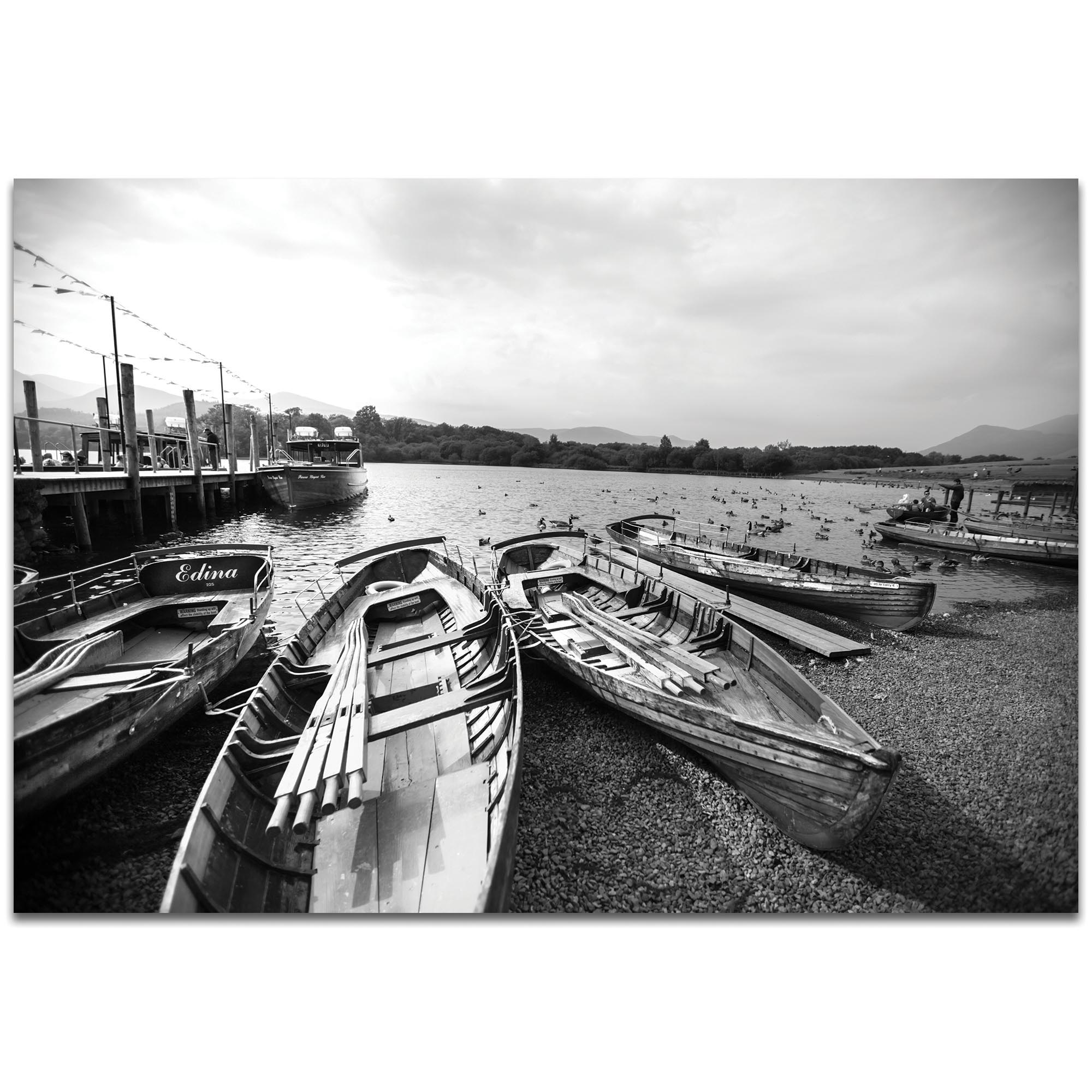 Black & White Photography 'Row of Rowers' - Coastal Art on Metal or Plexiglass