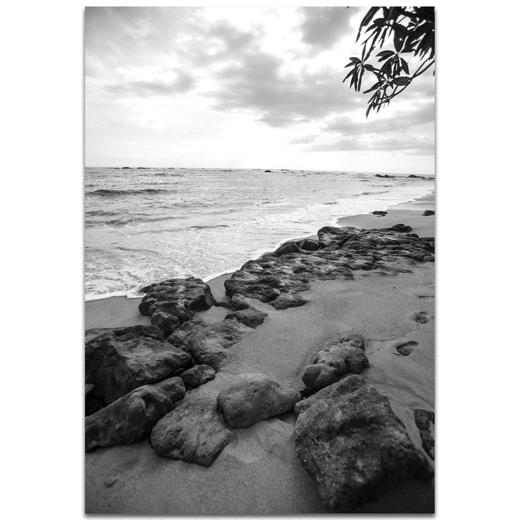 Black & White Photography 'The Coastline' - Coastal Art on Metal or Plexiglass