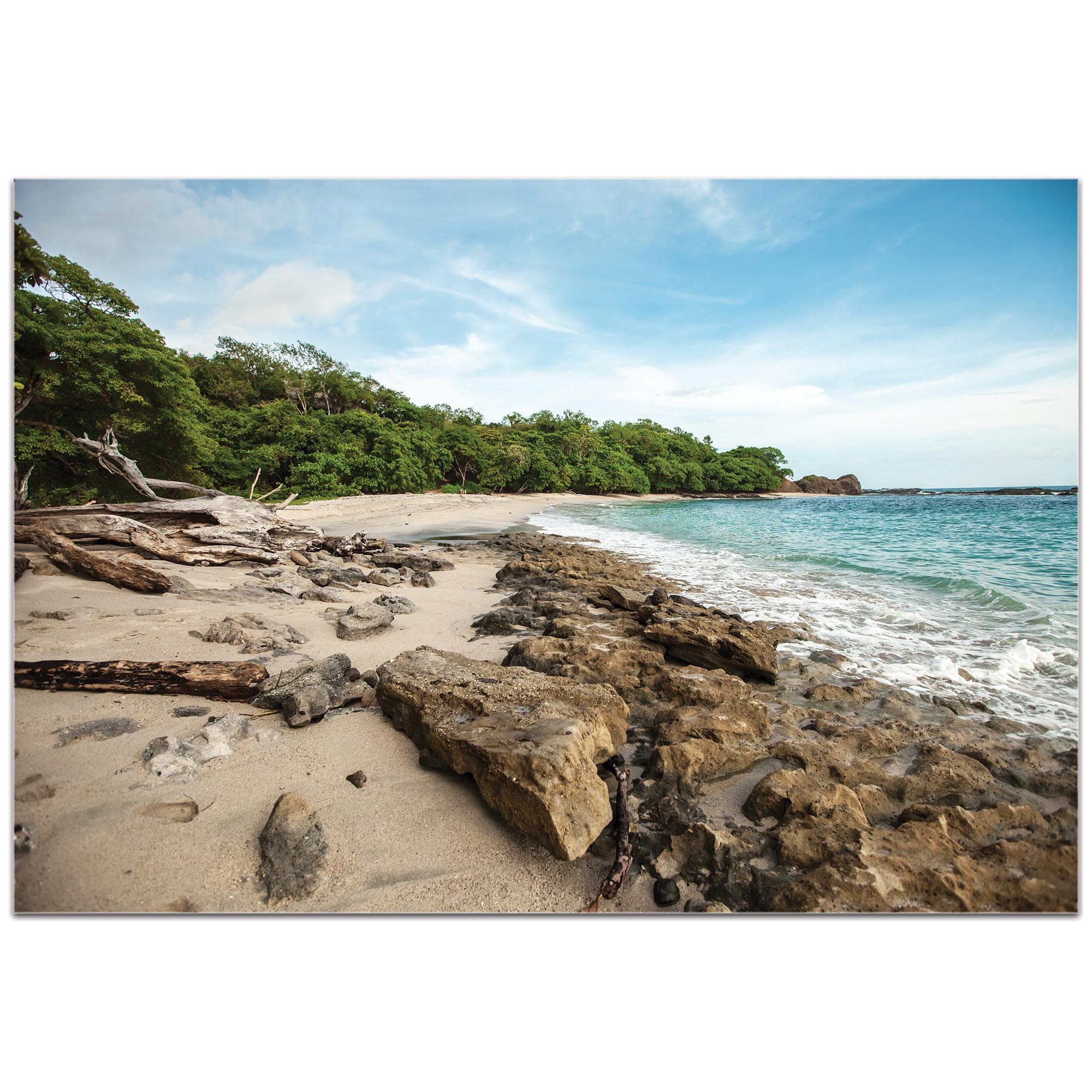 Coastal Wall Art 'Tropical Jungle' - Beach Decor on Metal or Plexiglass - Image 2