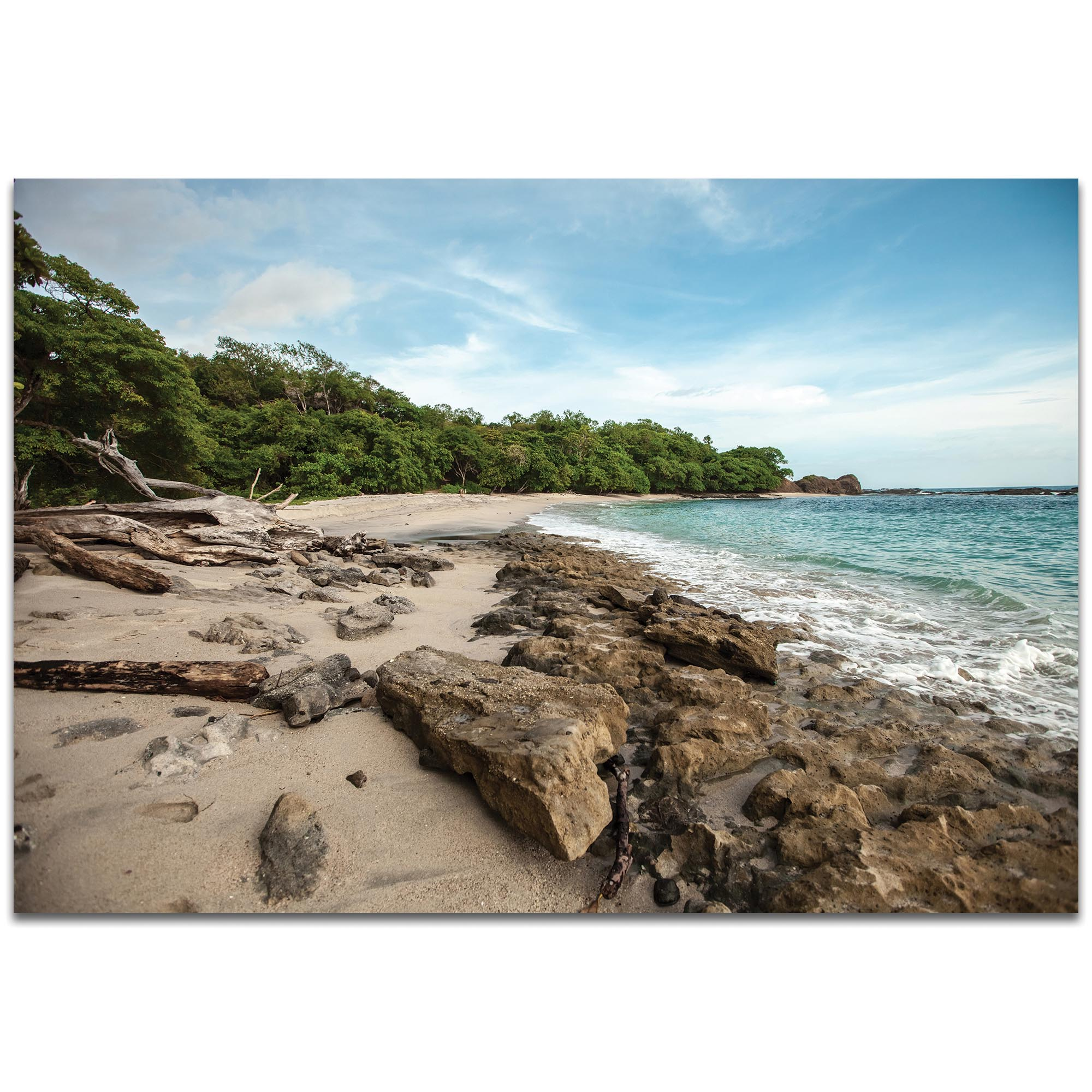 Coastal Wall Art 'Tropical Jungle' - Beach Decor on Metal or Plexiglass