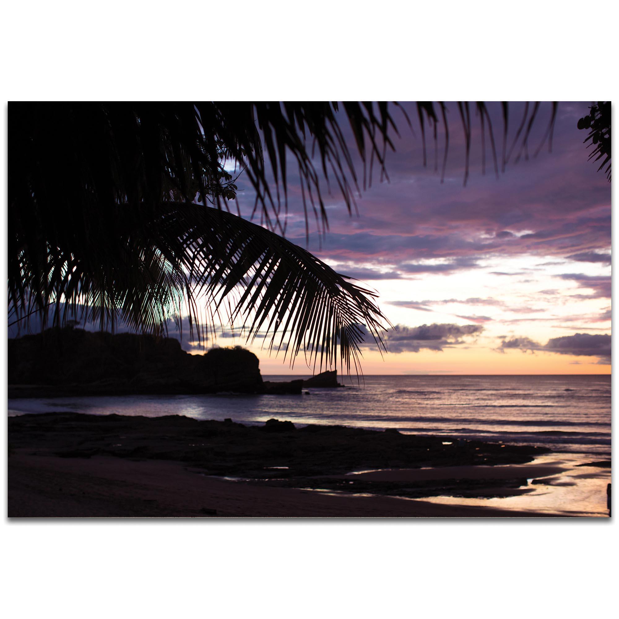 Coastal Wall Art 'Sunset Palms' - Beach Sunset Decor on Metal or Plexiglass