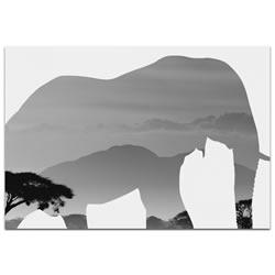 ELEPHANT SAVANNA - 32x22 in. Metal Animal Print