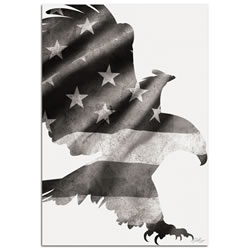 PATRIOT EAGLE BLACK & WHITE - 32x22 in. Metal US Flag Print
