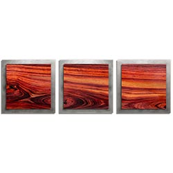 Adam Schwoeppe Warm Wood Essence Silver 38in x 12in Contemporary Style Wood Wall Art
