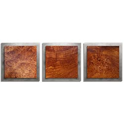 Adam Schwoeppe Swirled Wood Essence Silver 38in x 12in Contemporary Style Wood Wall Art