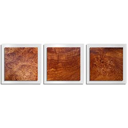 Adam Schwoeppe Swirled Wood Essence White 38in x 12in Contemporary Style Wood Wall Art