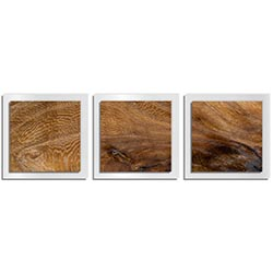 Adam Schwoeppe Knotted Wood Essence White 38in x 12in Contemporary Style Wood Wall Art