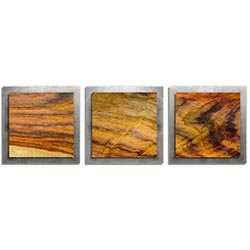 Adam Schwoeppe Streaked Wood Essence Silver 38in x 12in Contemporary Style Wood Wall Art