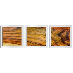 Adam Schwoeppe Streaked Wood Essence White 38in x 12in Contemporary Style Wood Wall Art