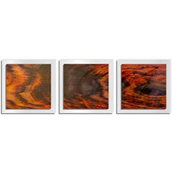 Adam Schwoeppe Burnt Wood Essence White 38in x 12in Contemporary Style Wood Wall Art