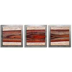 Adam Schwoeppe Auburn Wood Essence Silver 38in x 12in Contemporary Style Wood Wall Art