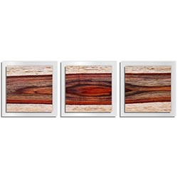 Adam Schwoeppe Auburn Wood Essence White 38in x 12in Contemporary Style Wood Wall Art