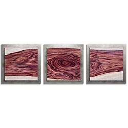 Adam Schwoeppe Rose Wood Essence Silver 38in x 12in Contemporary Style Wood Wall Art
