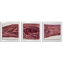 Adam Schwoeppe Rose Wood Essence White 38in x 12in Contemporary Style Wood Wall Art