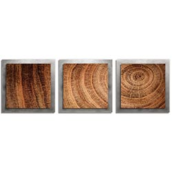 Adam Schwoeppe Rich Wood Essence Silver 38in x 12in Contemporary Style Wood Wall Art