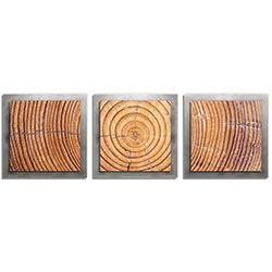 Adam Schwoeppe Ringed Wood Essence Silver 38in x 12in Contemporary Style Wood Wall Art
