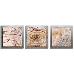 Adam Schwoeppe Aged Wood Essence Silver 38in x 12in Contemporary Style Wood Wall Art